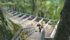 Deck construction 2