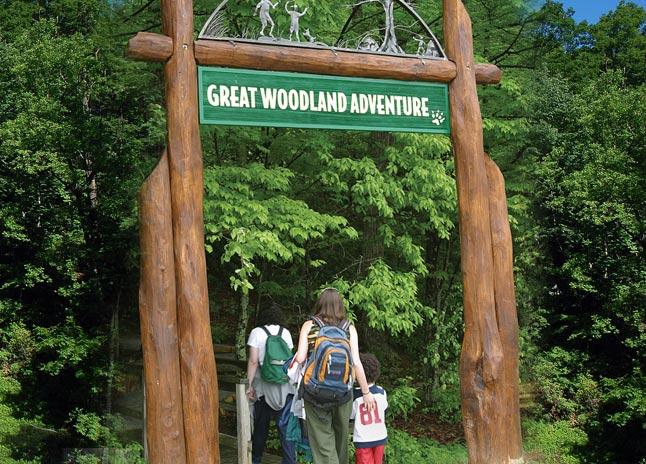 greatwoodlandadventure